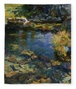 Alpine Pool Fleece Blanket