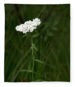 Alpine Yarrow Wildflower 2 Fleece Blanket