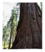 Alta Vista Giant Sequoia Fleece Blanket