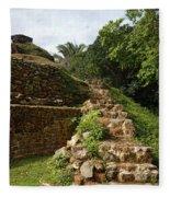 Altun Ha Maya Ruins Fleece Blanket
