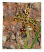 Amanda's Pennant Dragonfly Female Fleece Blanket