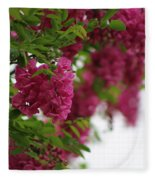 Amaranth Pink Flowering Locust Tree In Spring Rain Fleece Blanket