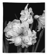 Amaryllis In Black And White Fleece Blanket