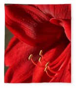 Amaryllis6689 Fleece Blanket