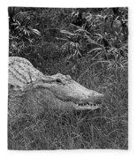 American Alligator 2 Bw Fleece Blanket