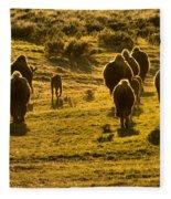 American Bison Sunset March Fleece Blanket