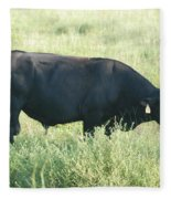 American Cow Fleece Blanket
