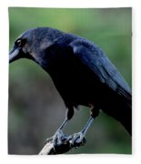 American Crow In Thought Fleece Blanket