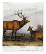 American Elk, 1846 Fleece Blanket