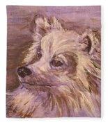 American Eskimo Dog Fleece Blanket