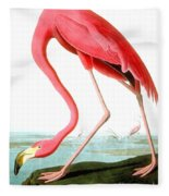 American Flamingo Fleece Blanket