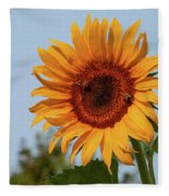 American Giant Sunflower In The Morning Fleece Blanket