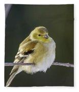 American Gold Finch Fleece Blanket