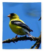 American Goldfinch 1 Fleece Blanket