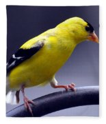 American Goldfinch Fleece Blanket