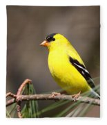 American Goldfinch II Fleece Blanket