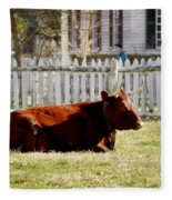 American Milking Devon In Spring Fleece Blanket