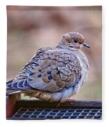 American Mourning Dove Fleece Blanket