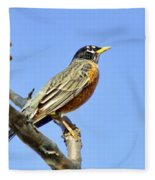 American Robin - 1 Fleece Blanket