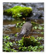 American Robin In Garden Springs Creek Fleece Blanket