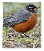 American Robin With Muddy Beak Fleece Blanket