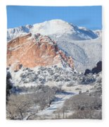 America's Mountain Fleece Blanket
