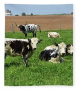 Amish Farm With Spotted Cows And Cattle In A Field Fleece Blanket