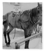 Amish Horse Fleece Blanket