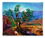 Among The Red Rocks - Sedona Fleece Blanket
