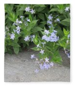 Amsonia Tabernaemontana Fleece Blanket