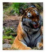 Amur Tiger 3 Fleece Blanket