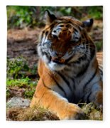Amur Tiger 4 Fleece Blanket