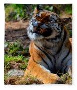 Amur Tiger 6 Fleece Blanket