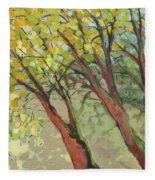 An Afternoon At The Park Fleece Blanket by Jennifer Lommers