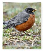 An American Robin With Muddy Beak Fleece Blanket