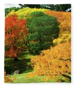 An Explosion Of Color Fleece Blanket