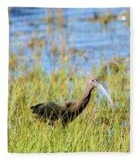An Ibis In The Grass Fleece Blanket