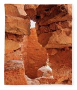 Anasazi Cliff Dwellings #8 Fleece Blanket