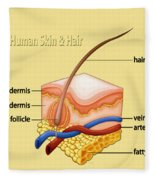 Anatomy Of The Skin And Hair Fleece Blanket
