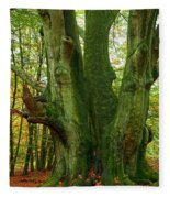 Ancient German Oak Trees In Sababurg Fleece Blanket