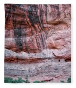 Ancient Ruins Mystery Valley Colorado Plateau Arizona 03 Fleece Blanket