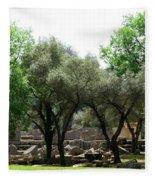 Ancient Ruins Temple Grounds 2 Fleece Blanket
