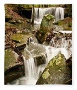 Ancient Stream Fleece Blanket