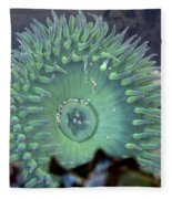Anemone Fleece Blanket