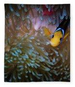 Anemonefish Fleece Blanket