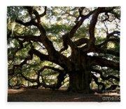 Angel Oak In November Fleece Blanket