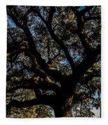 Angel Oak Tree Fleece Blanket