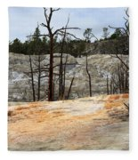 Angel Terrace At Mammoth Hot Springs Yellowstone National Park Fleece Blanket