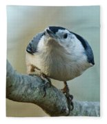 Angry White Breasted Nuthatch Fleece Blanket