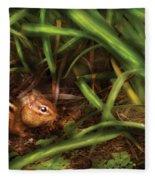 Animal - Wild - Cute Little Chipmunk  Fleece Blanket